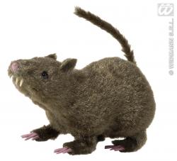 RAT POILUS 21CM