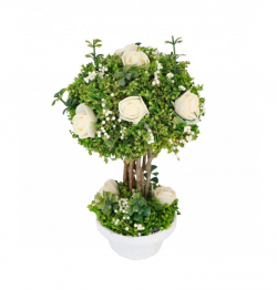 MINI ROSES BLANCHES DANS...