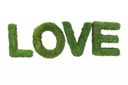 SET 4 LETTRES LOVE EN...