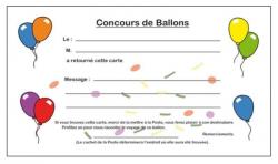 CARTES LACHER DE BALLONS  /100